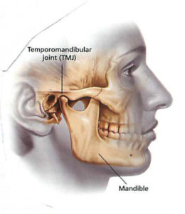 Plum Grove Dental Associates - TMJ Illustration of Anatomy